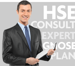 HSE Consult Expert Diagnose Plan