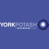 york-potash
